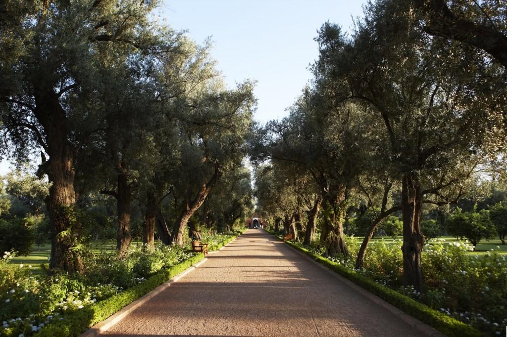 Jardin Marrakech