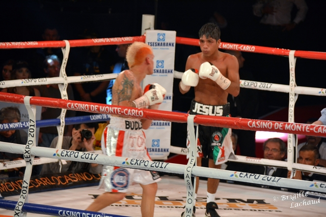 Boxing monaco 21022015BL 161