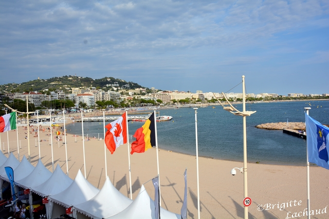yachting festival 2015 BL 027