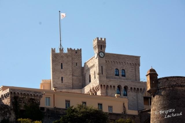 Monaco telecom